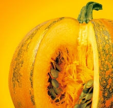 The therapeutic pumpkin is included in the UROSTEMOL® preparations. This is grown in our own cultivation specifically for producing pharmaceuticals.