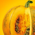 Therapeutic Pumpkin: for urinary symptoms related to bladder and prostate